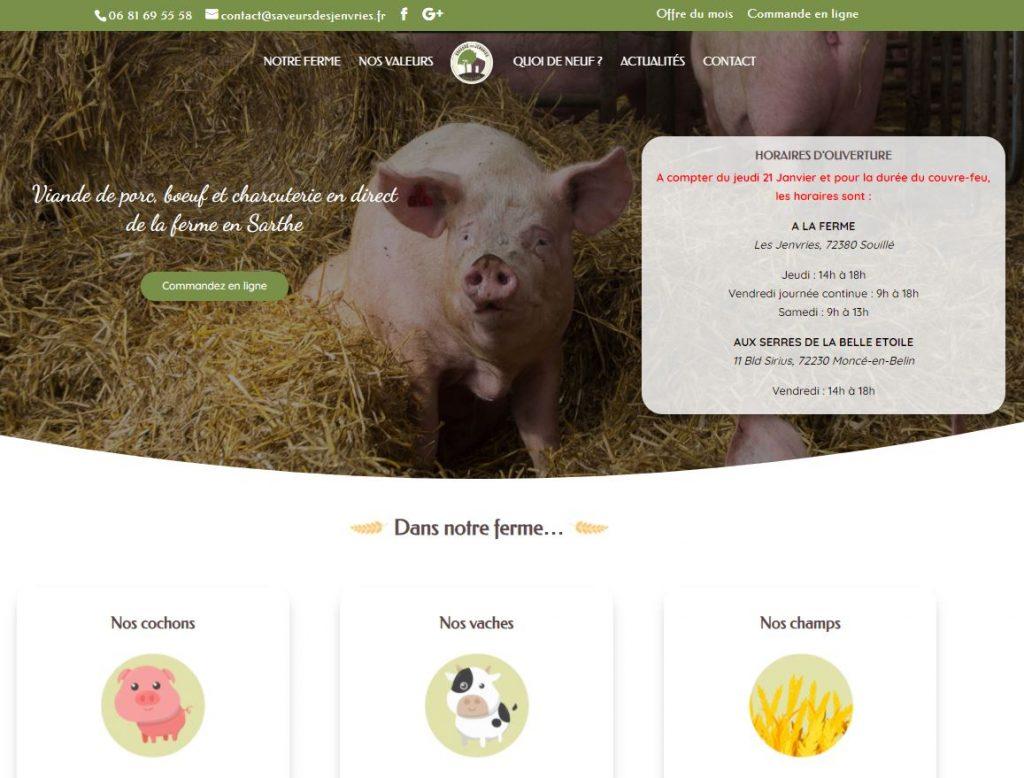 Page accueil site Jenvries